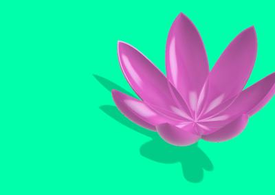 lotusvideo2
